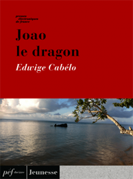 piece - Joao le dragon